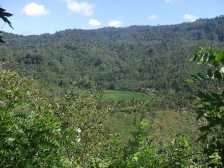 Menggali Potensi Alam Desa Sepang : Eksotis Namun Tersembunyi